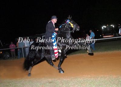CLASS 35  WALKING HORSE CHAMPIONSHIP