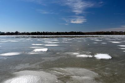 Tidal Basin / Sunny DC Winter Day