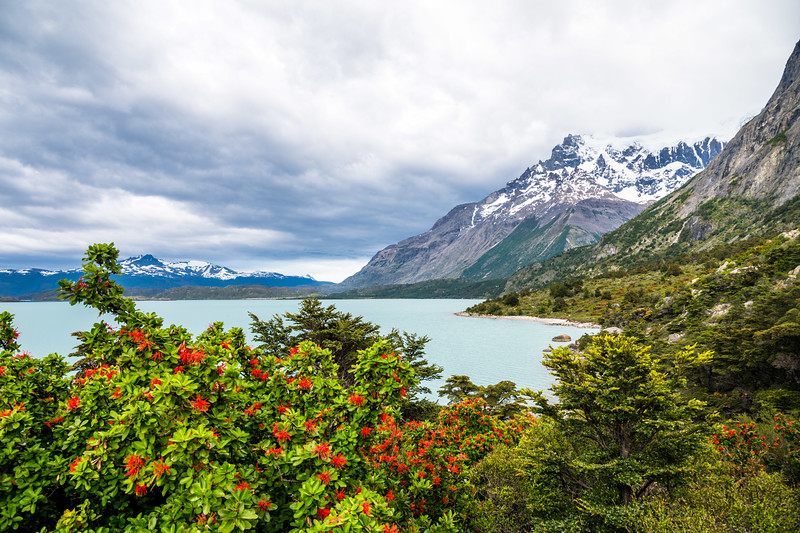 Patagonia-38.jpg