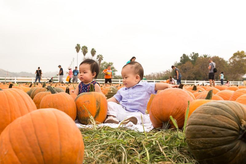 oliver_ella_pumpkin_patch-31.jpg