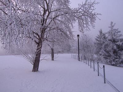 fog 'n' frost