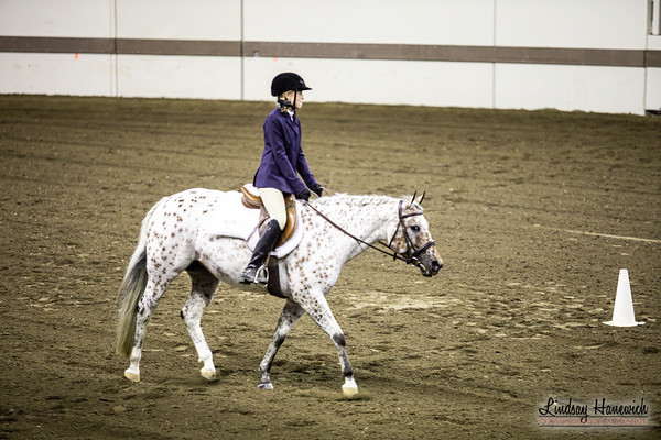 Hunt Seat Equitation on Flat