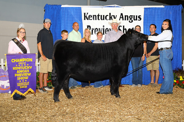 Kentucky Angus Preview Show