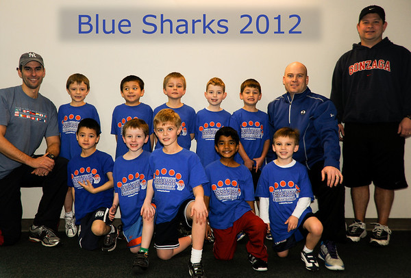 Blue Sharks Basketball 2012