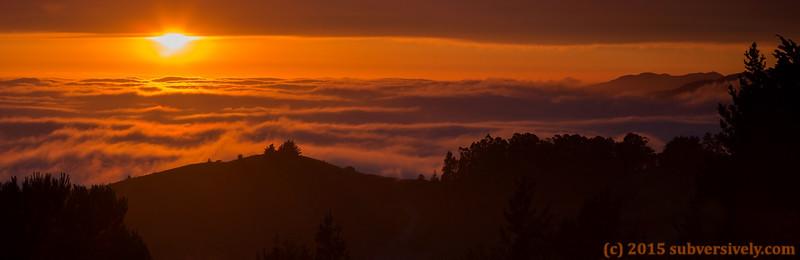 The Beauty of California