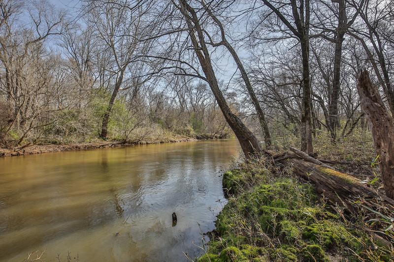Apalachee River Timberlands_-13.jpg