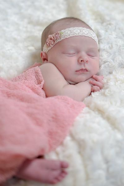 Newborns 03-25-2018-23.jpg