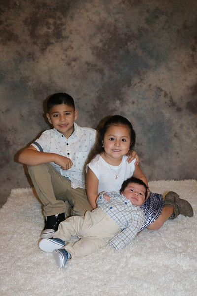 Lety's babies 2017