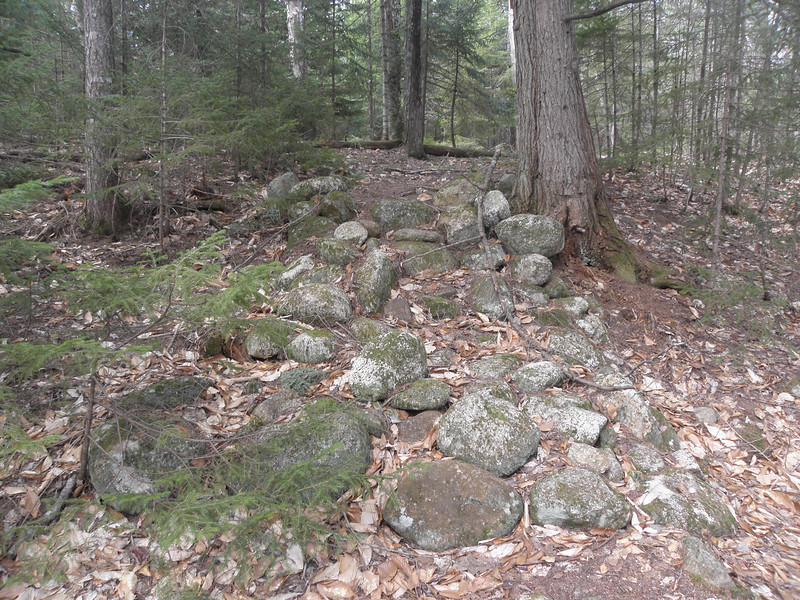 Old rock steps, meets the current trail about 15 feet ahead.JPG