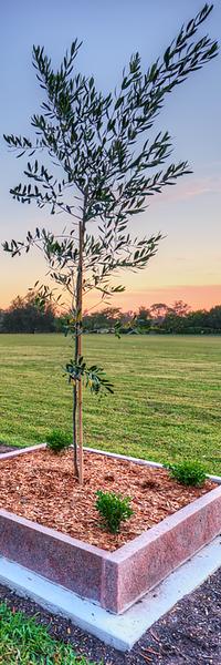 Pinegrove Memorial Park