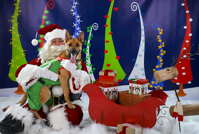 Mike & Michelle Watson - Pet Pics with Santa