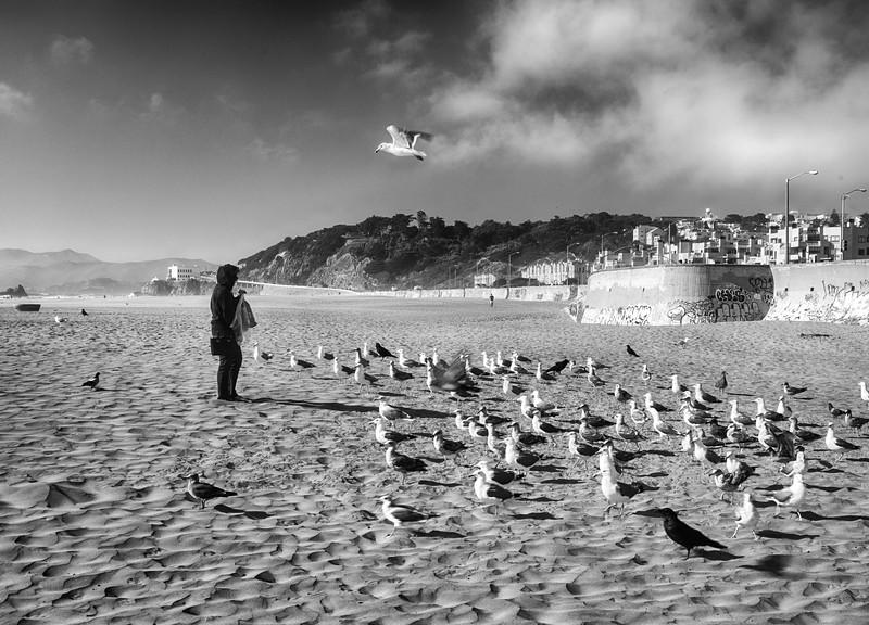 Ocean Beach - Sunny