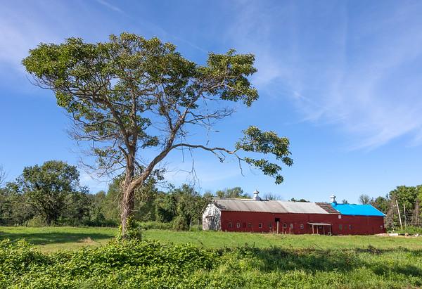 Kahana Farm