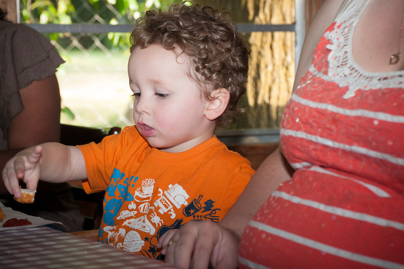 Sam's 2nd Birthday Party