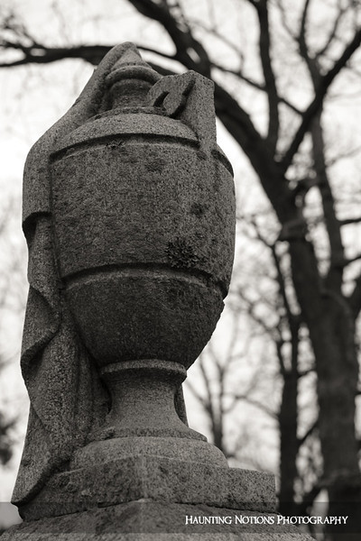 Partially Concealed ((Oak Hill Cemetery, Grand Rapids MI)