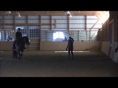 TSRC 2019-03-13 Milestone Sport Horses Video