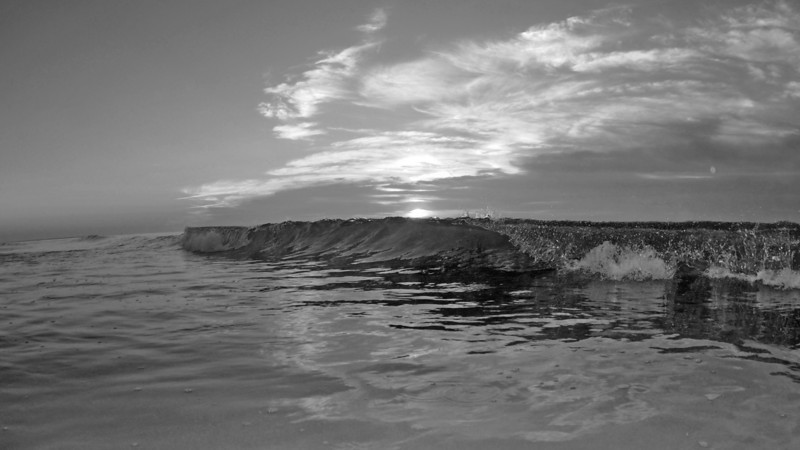 SCOPe_Huntington Beach State Park OCT 2012_8 B&W.jpg