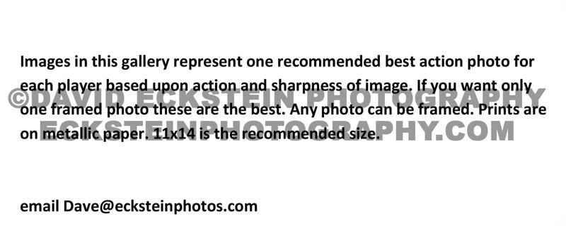 Framed Photo Special