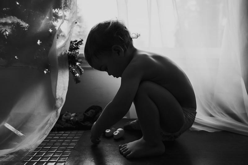 ChristmasShoreline-54.jpg
