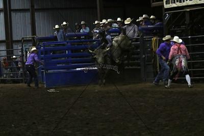 Saturday Bull Riding First Go 2015