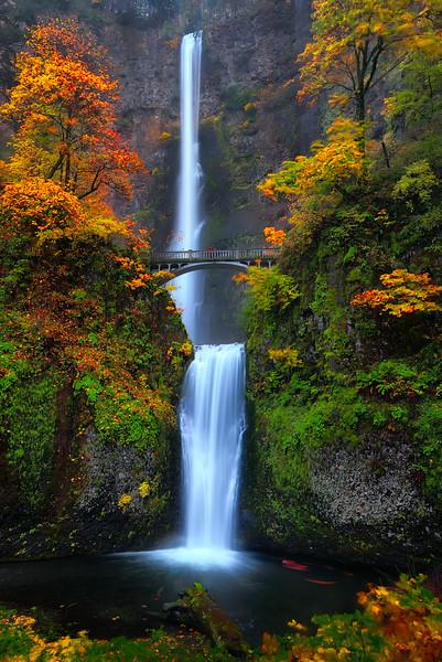 Multinoma Falls in Autumn