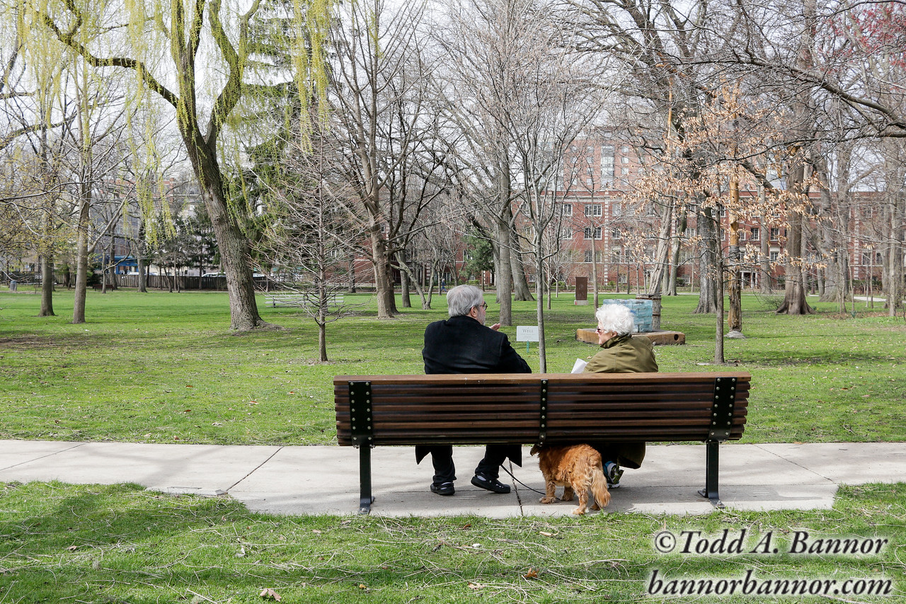 A conversation in Austin Gardens.