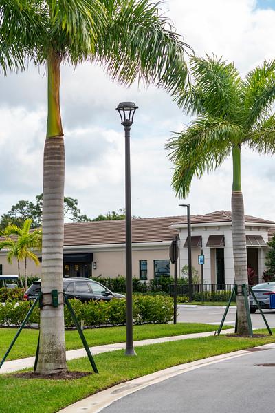 Spring City - Florida - 2019-209.jpg