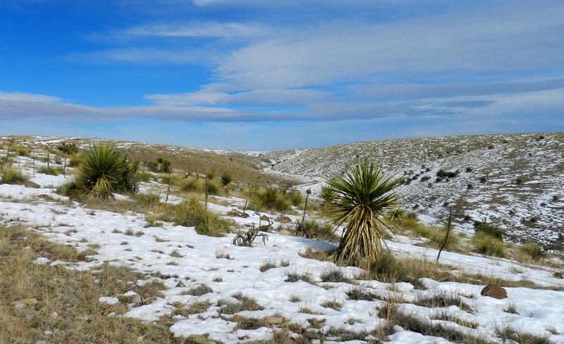 Pinto Canyon snow6.jpg