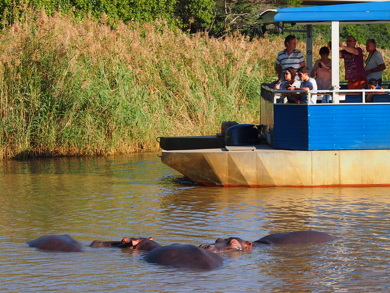 P5036014-tourist-boat.JPG