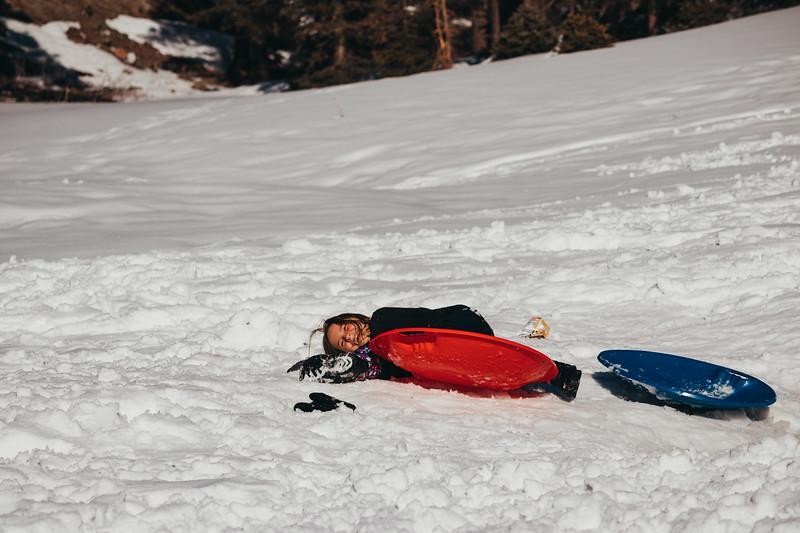 snowMLK-2751.jpg