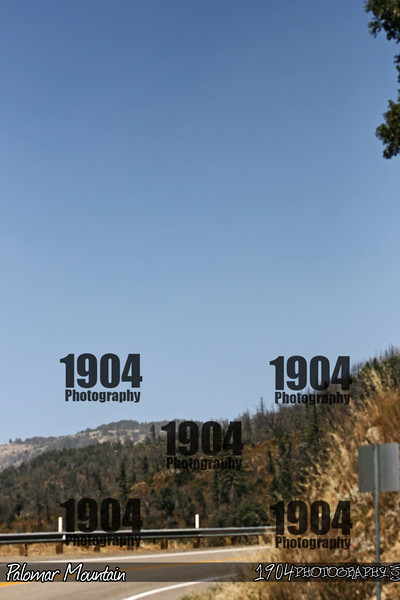 20090906_Palomar Mountain_0932.jpg