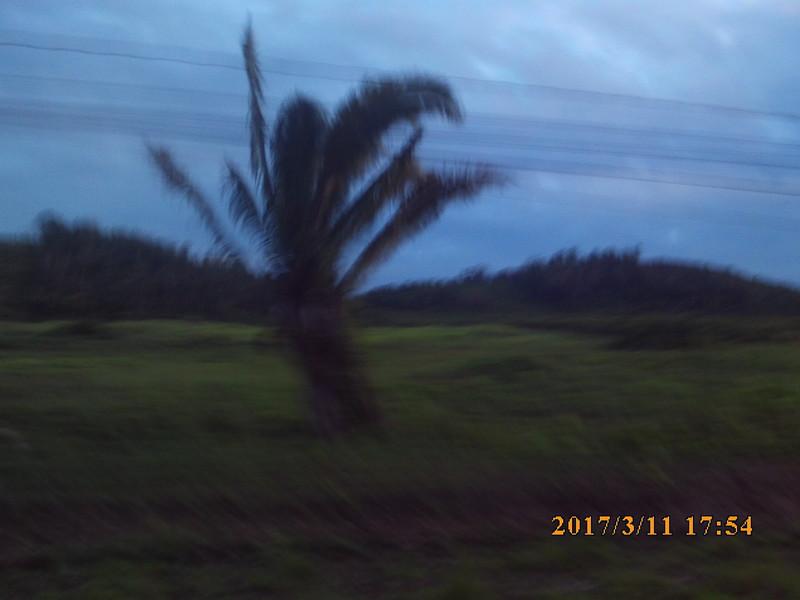 SUNP0689.JPG