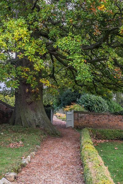 Hob Green autumn-3.jpg