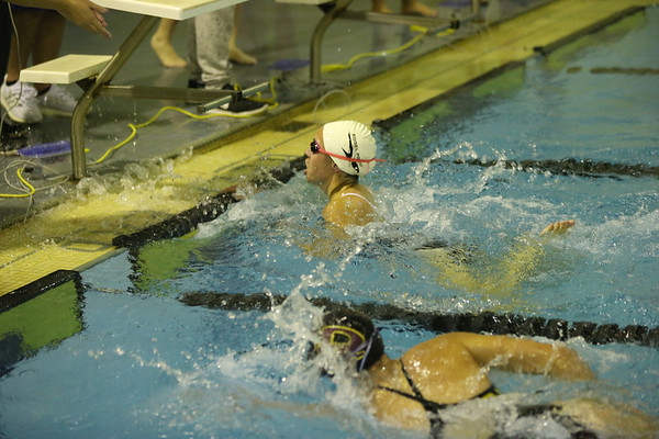 Edsel Girls Swimming