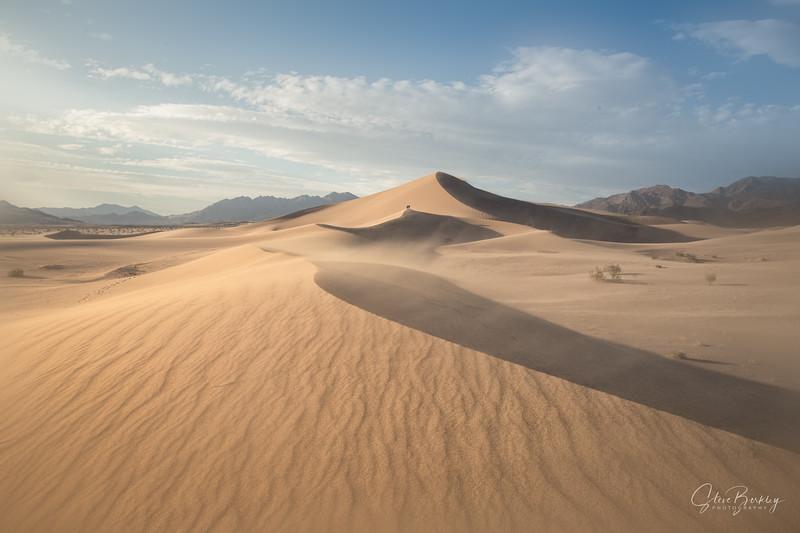 Sandstorm at Ibex VIII