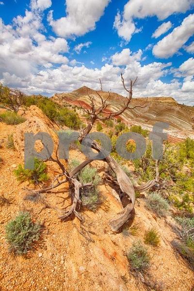 Burr-Noton Trail 7089_HDR.jpg