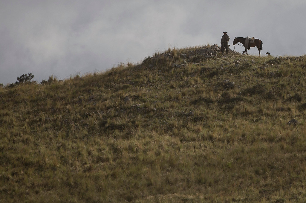 . A man stand next to his horse and dogs as he watches the second stage of the Dakar Rally 2015 between the cities of Villa Carlos Paz and San Juan, Argentina, Monday, Jan. 5, 2015. The race will finish on Jan. 17, passing through Bolivia and Chile and returning to Argentina. (AP Photo/Felipe Dana)