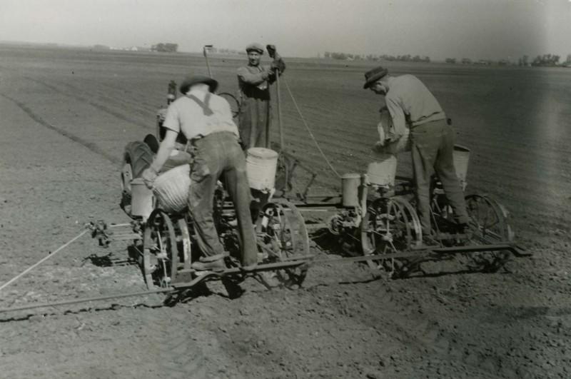 JA146.  Unknown‡ farmers planting seed – ca 1940.jpg