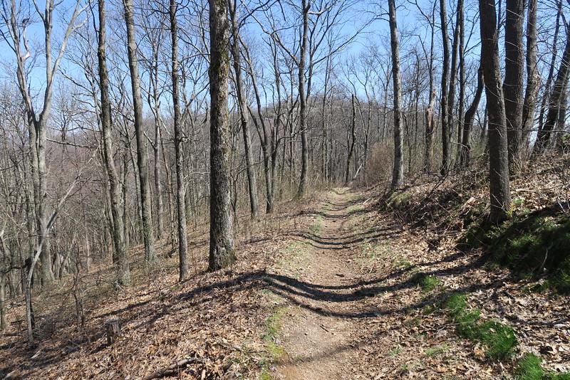White Rocks Overlook Trail - 3,300'