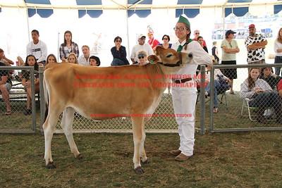 2014 LHVCF Dairy