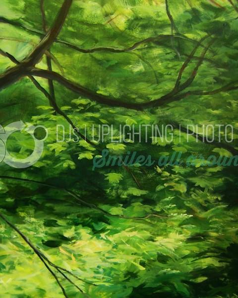Forest Impression_batch_batch.jpg