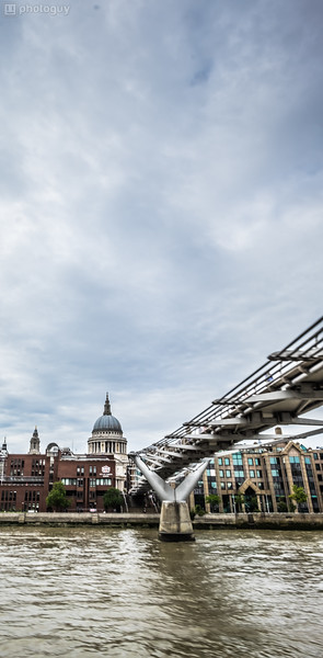 20140728_LION_LONDON (26 of 48)
