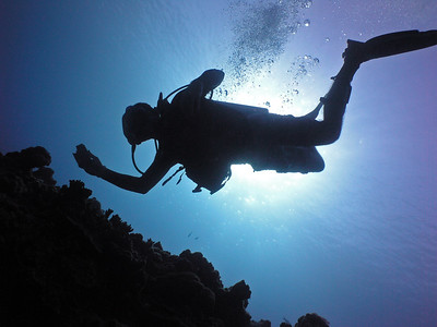Diving at Lau Lau Bay - 11/24/12