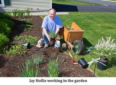 WP Gardening