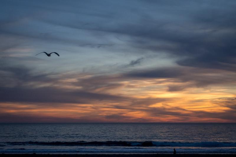 December 2 - Flying into the sunset.jpg