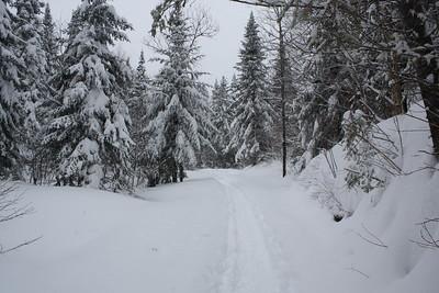 21-2-2013 Raquette au Saguenay, Jour 3 (Au Mont Edouard)