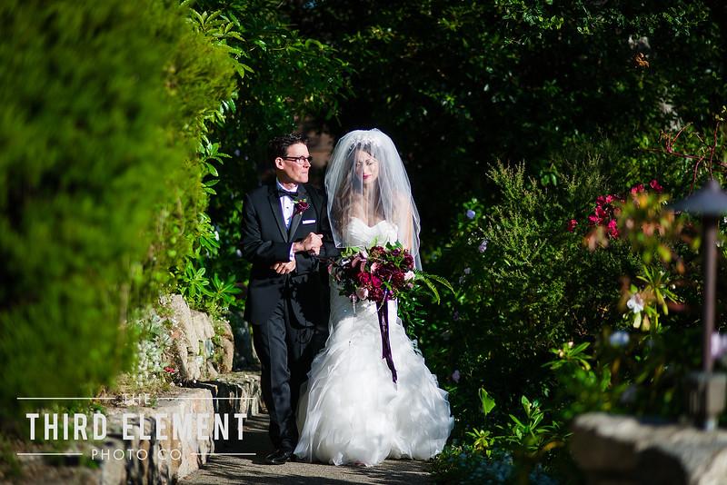 Third Element Photo Co Lina + Rett Carmel Bay Area Wedding Photographer_0031.jpg
