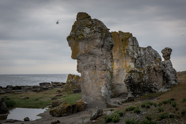 Asunden - Gotland