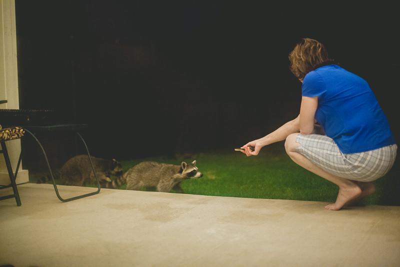 20140809-birthday-raccoons-2.jpg