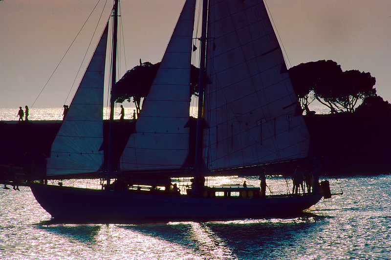 Sailing Out Of Newport Harbor